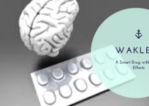 Waklert smart drug